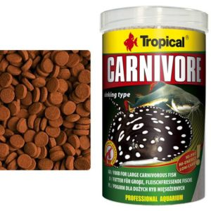 Tropical Carnivore Irish Fish Food Supplier highprotein food for bottom feeders pleco